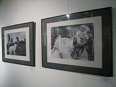 Выставка работ Витаса Луцкуса